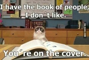 I-Have-The-Book-Of-People-I-Don-t-Like-----You-Are-On-The----
